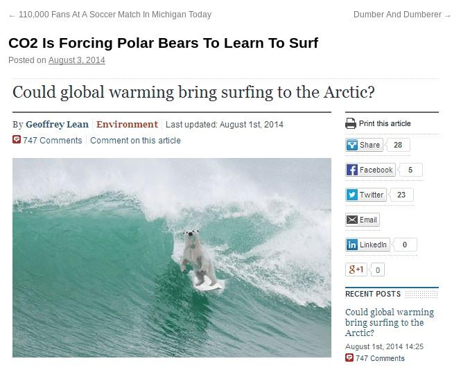 SurfBear