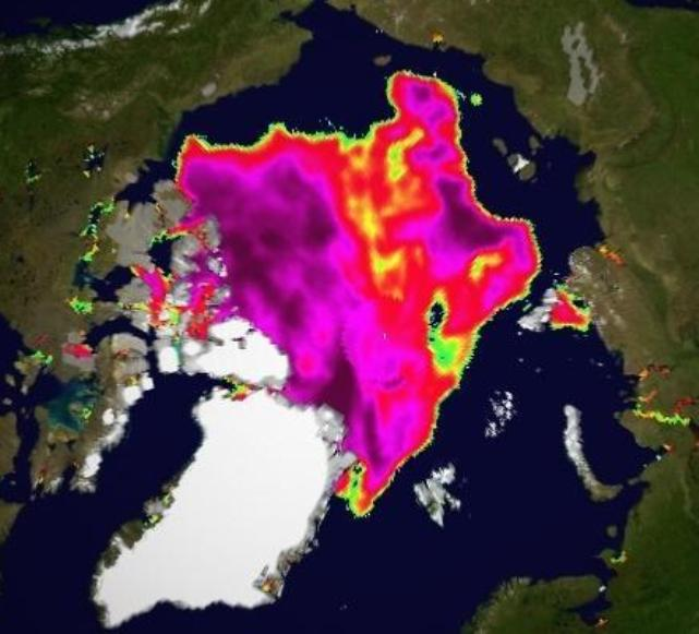 Cryosphere Today Arctic sea ice concentration on August 25th 2013