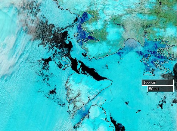 "NASA Worldview ""false-color"" image of the Vilkitsky Strait on June 23rd 2016, derived from the VIIRS sensor on the Suomi satellite"