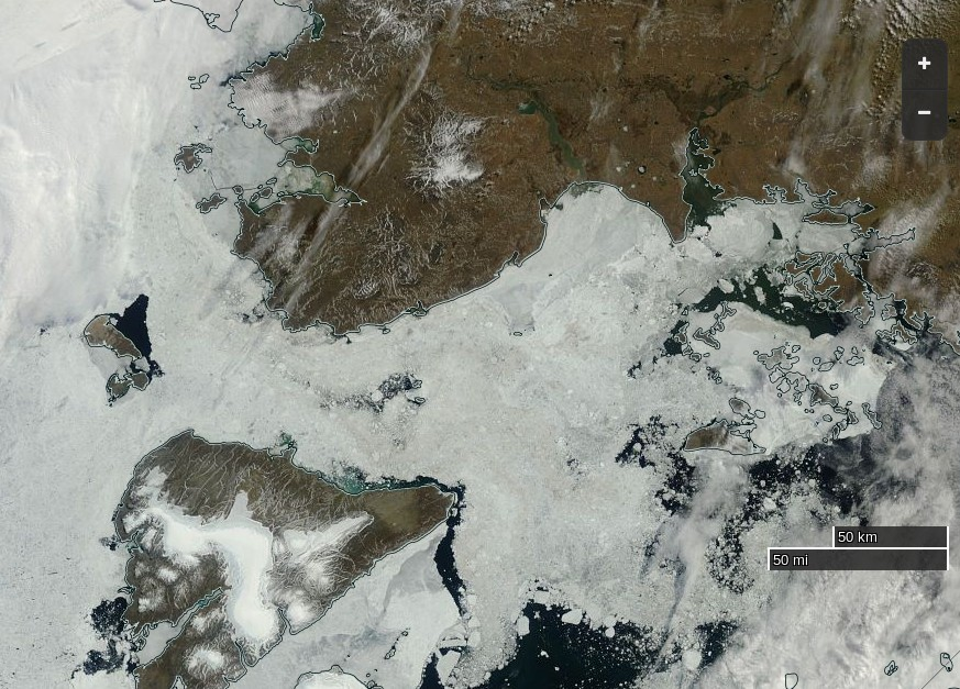 "NASA Worldview ""true-color"" image of the Vilkitsky Strait on July 20th 2016, derived from the MODIS sensor on the Terra satellite"