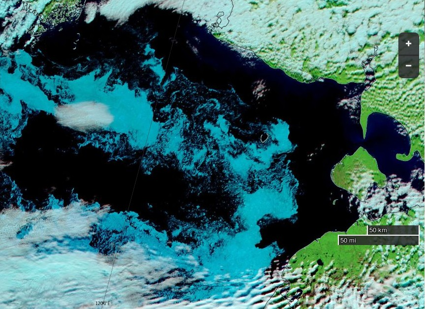 "NASA Worldview ""false-color"" image of the south-western Laptev Sea on August 16th 2016, derived from the MODIS sensor on the Terra satellite"