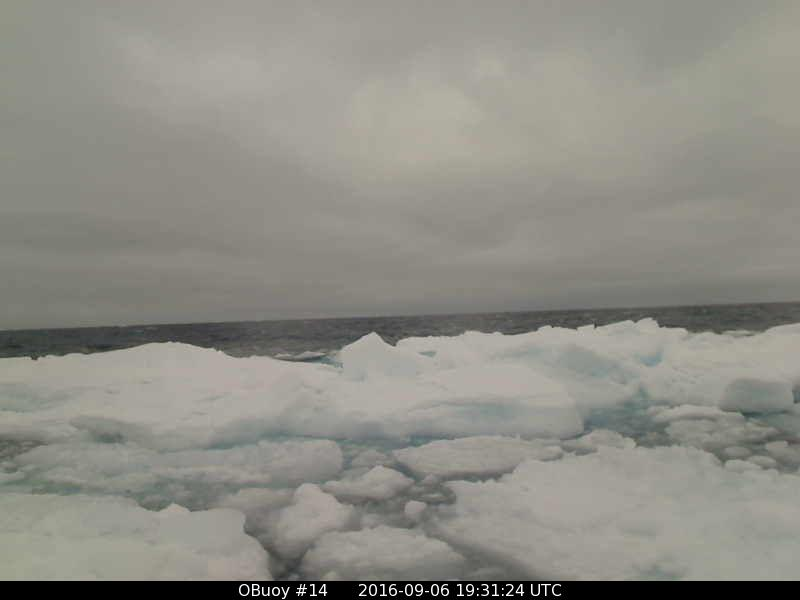 O-Buoy 14 image from September 6th 2016