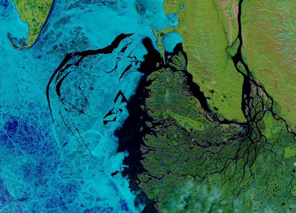 "NASA Worldview ""false-color"" image of the Laptev Sea on June 19th 2019, derived from the MODIS sensor on the Aqua satellite"