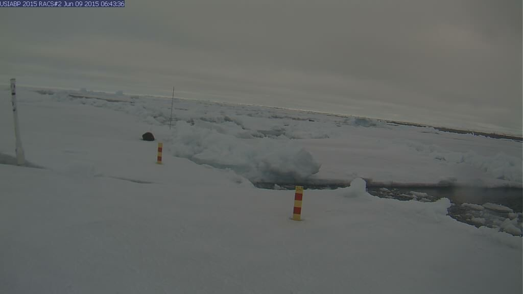 Ice Mass Balance Buoy 2015B webcam image on June 9th 2015. Spot the cracks!