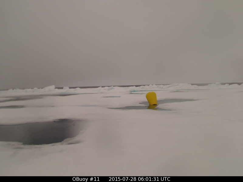 O-Buoy 11 image from July 28th 2015, with open water in the background