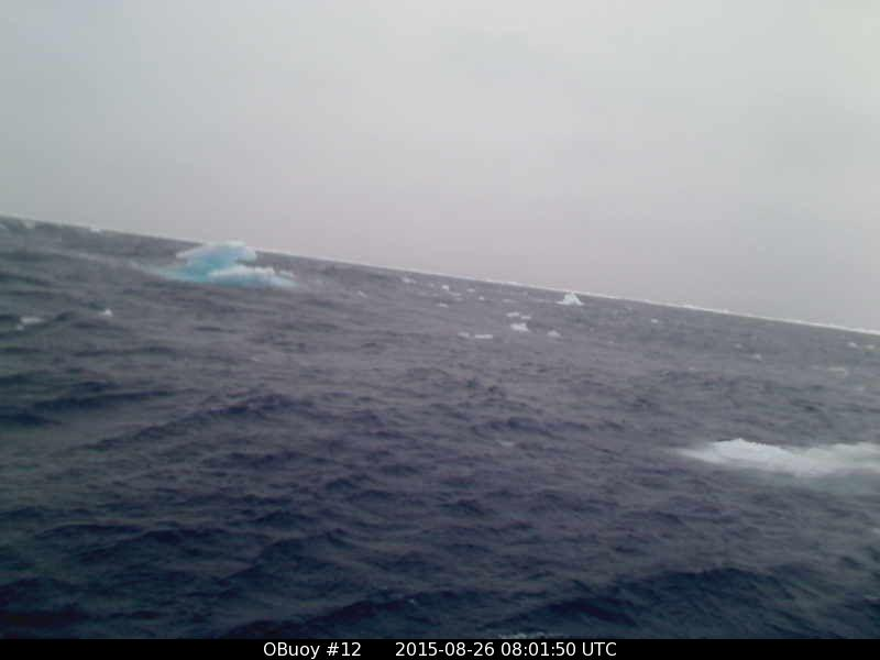 O-Buoy 12 image from August 26th 2015