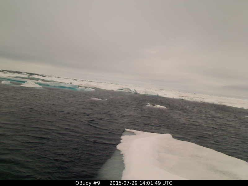 O-Buoy 9 image from July 29th 2015