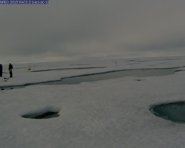 NPEO webcam 2 image from August 8th 2015, including scientists from the 'North Pole 2015' ice camp