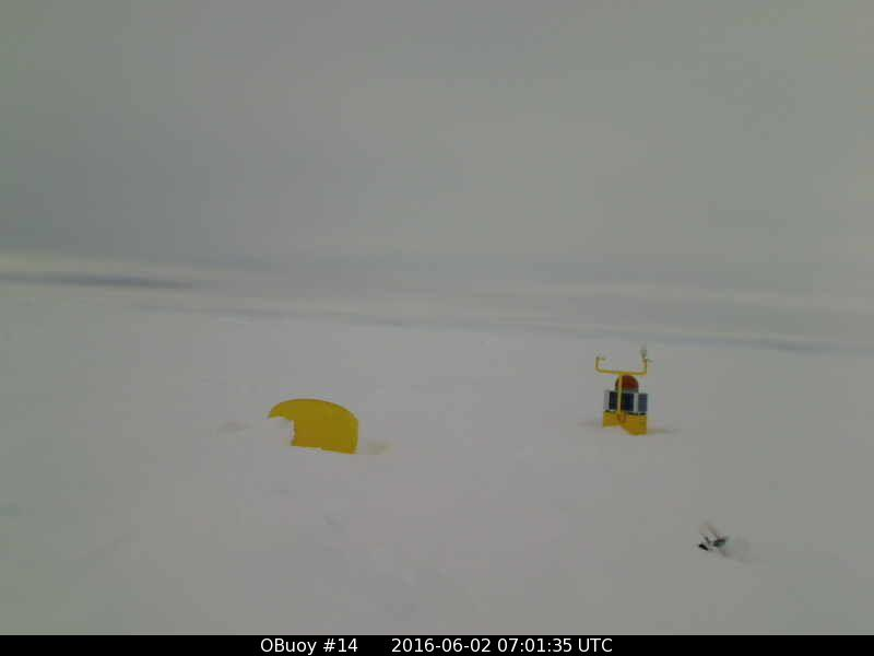 O-Buoy 14 image from June 2nd 2016