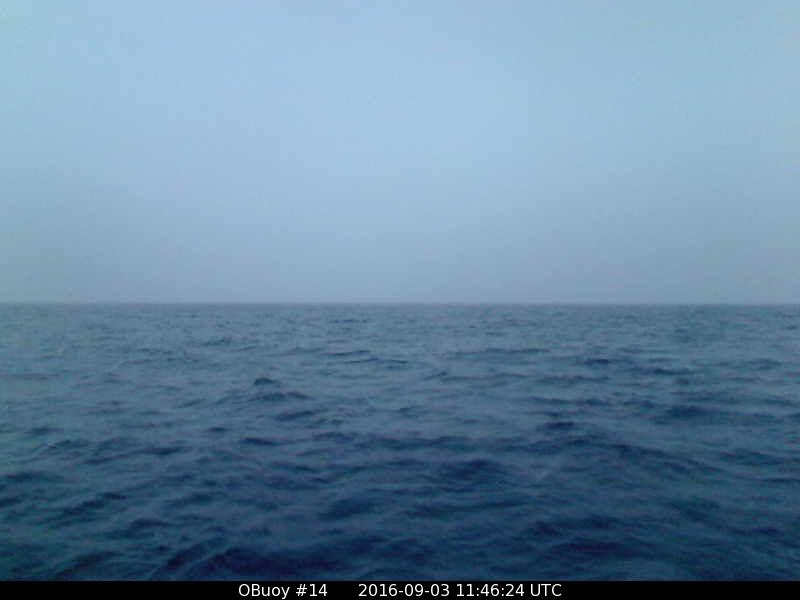 O-Buoy 14 image from September 3rd 2016