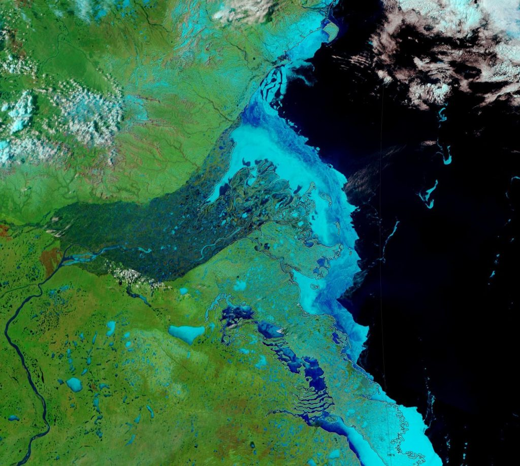 "NASA Worldview ""false-color"" image of the Mackenzie Delta on May 24th 2019, derived from the MODIS sensor on the Terra satellite"