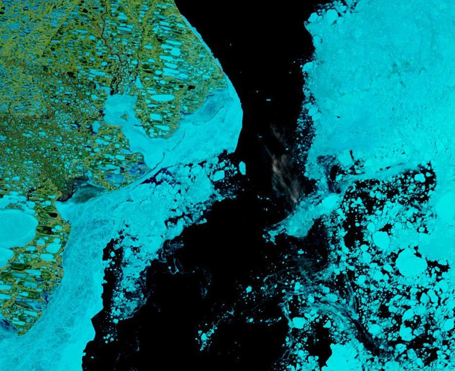 "NASA Worldview ""false-color"" image of the Beaufort Sea on June 14th 2019, derived from the MODIS sensor on the Terra satellite"