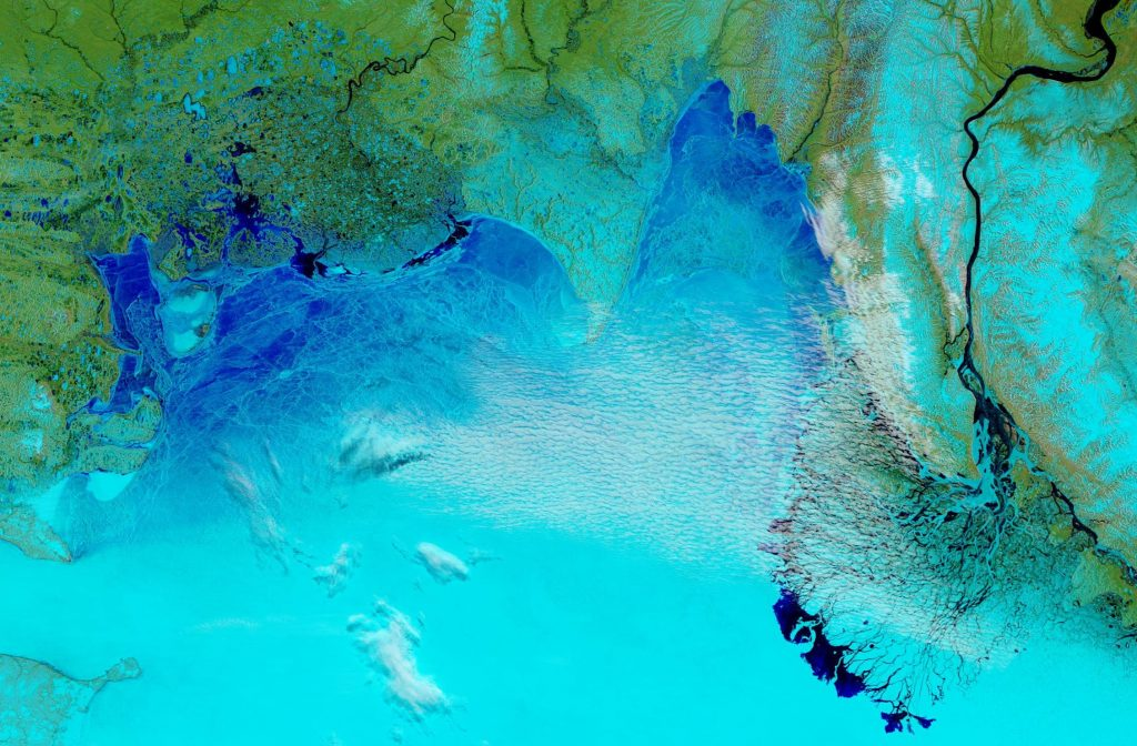 "NASA Worldview ""false-color"" image of the Laptev Sea on June 4th 2019, derived from the MODIS sensor on the Terra satellite"
