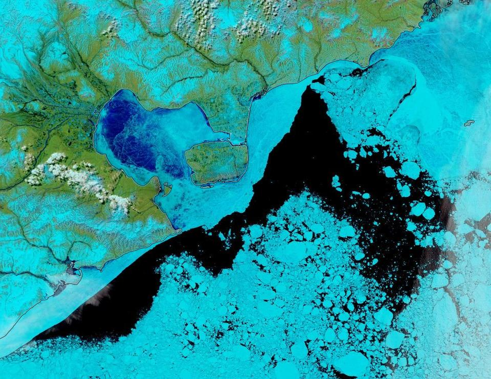 "NASA Worldview ""false-color"" image of the East Siberian Sea on June 1st 2020, derived from the MODIS sensor on the Terra satellite"