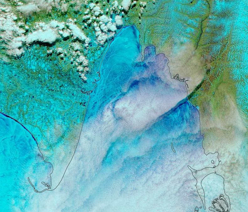 "NASA Worldview ""false-color"" image of the Laptev Sea on June 1st 2020, derived from the MODIS sensor on the Aqua satellite"