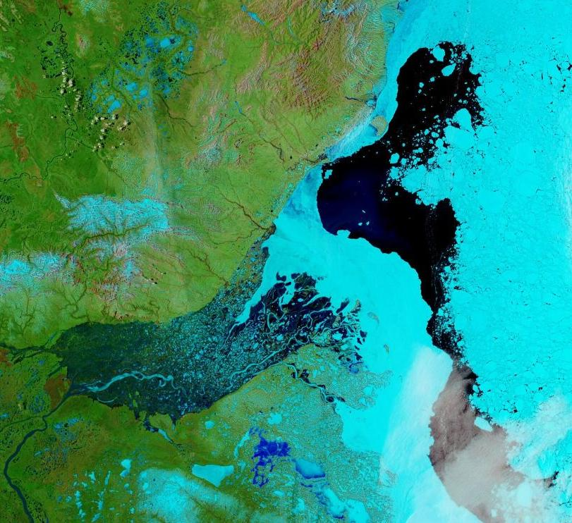 "NASA Worldview ""false-color"" image of the Mackenzie Delta on May 30th 2020, derived from the MODIS sensor on the Terra satellite"